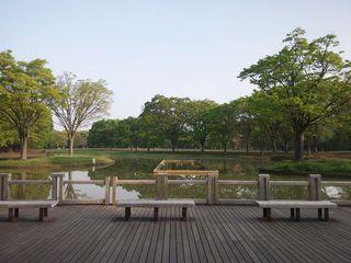 東京都渋谷区 代々木公園